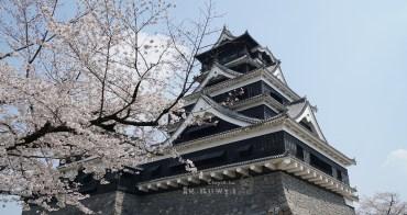 (熊本觀光必看) 熊本城春櫻浪漫 攝影玩家秘密景點 加藤神社