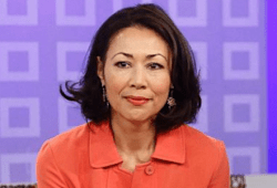 Ann Curry Lastly Opened Up About Her Controversial Right now Present Firing