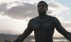 Why Black Panther Included That Character In Its Publish-Credit Scene