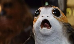 Had been the Porgs Price The Hype?