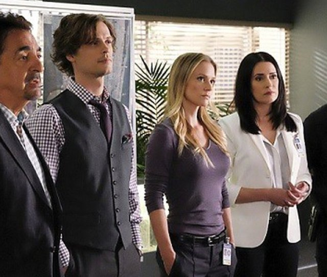 Criminal Minds What Are The Cast Members Are Up To Next