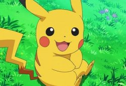 Any individual Jumped The White Home Fence Dressed As Pikachu