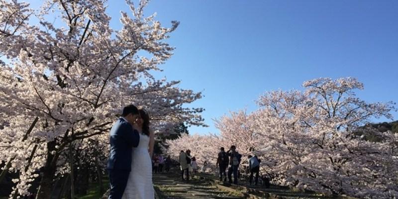 ▌京都。賞櫻▌必訪!絕美櫻花鐵道美景♥蹴上鐵道♥櫻花滿開