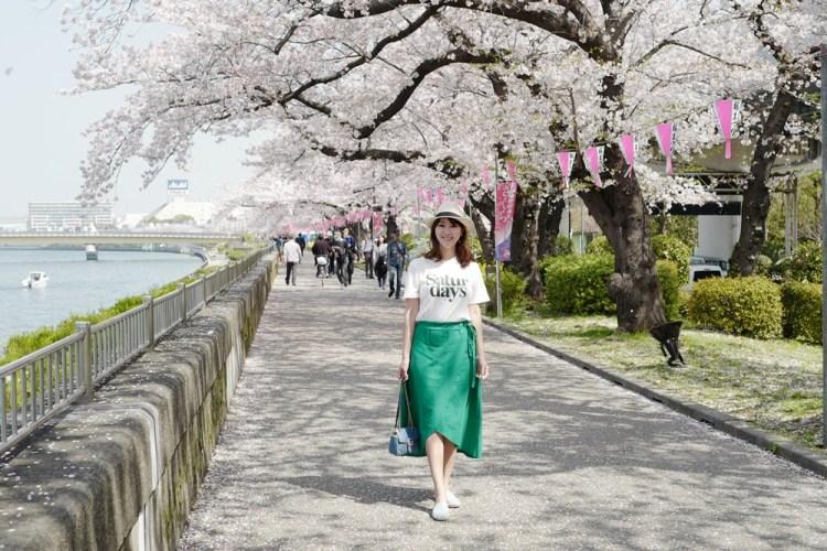▌東京賞櫻▌隅田公園櫻花河畔賞櫻。晴空塔就在眼前