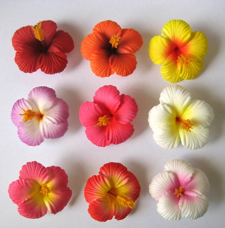 Hawaiian Flower Clips Amp Look At Clip Art Images ClipartLook