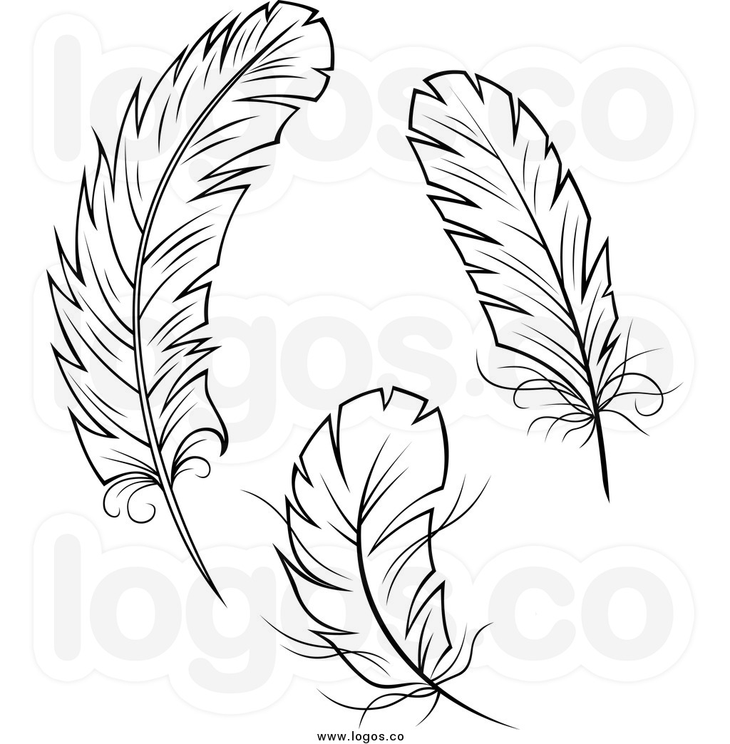 100 Feathers Clip Art