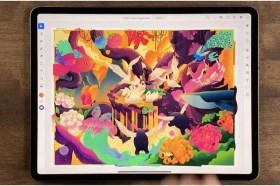 Adobe MAX 2020 創新大會:Adobe 正式推出 Illustrator iPad 版