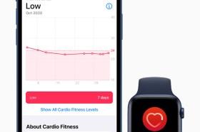 Apple Watch用戶快更新韌體!今天推出ECG心適能通知功能隨時監控你的心臟健康度