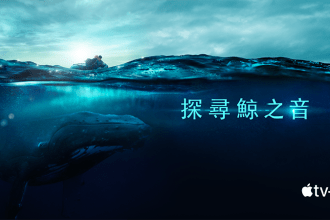 賞鯨季開跑!在登船之前 讓紀錄片《探尋鯨之音》帶你聽見鯨魚歌唱