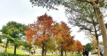 《台中景點》北屯區佔地萬坪新都生態公園冬季新亮點~浪漫落羽松這裡也有唷!小河、紅葉、輕鬆步道~快來享受一下!