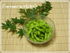 【農家のレシピ】美味しい枝豆の茹で方
