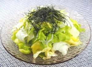 レタス しらす サラダ