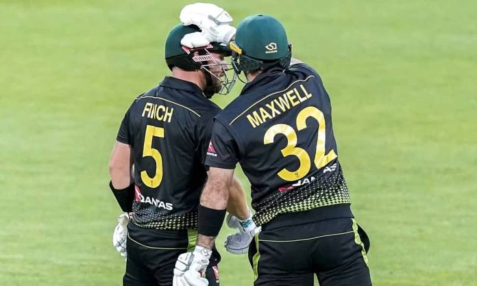 Cricket Image for By Outstanding Innings Of Maxwell And Finch Australia Defeated New Zealand By 64 R