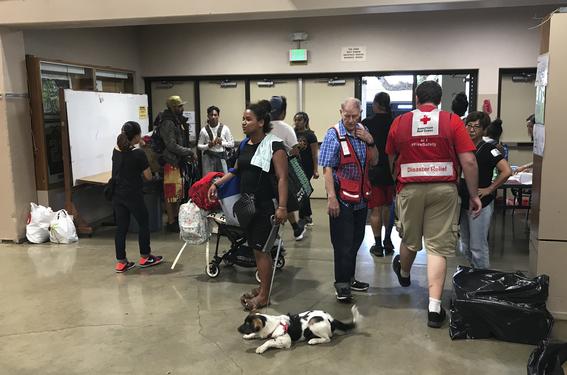 estado de emergencia por huracan lane en hawai 3