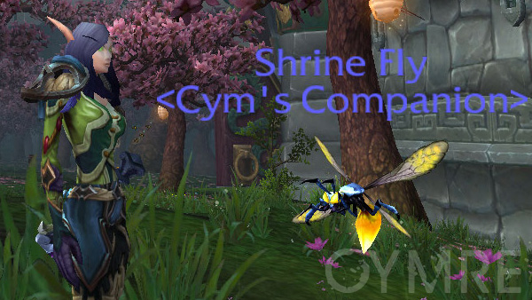 Shrine Fly