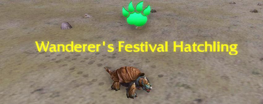 Wanderer's Festival Hatchling