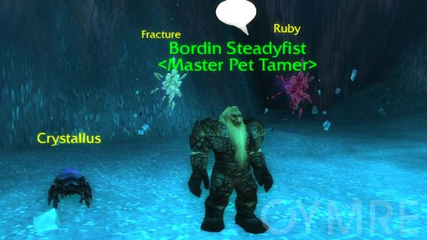 Bordin Steadyfist