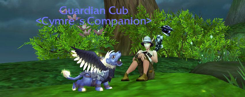 Guardian Cub