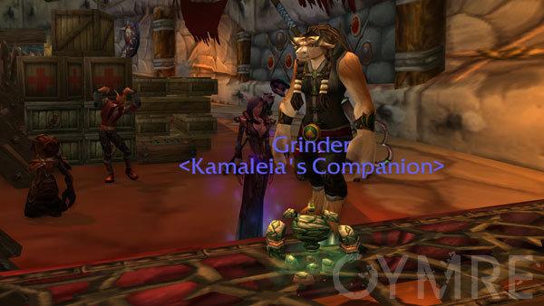 Kamalia and Grinder