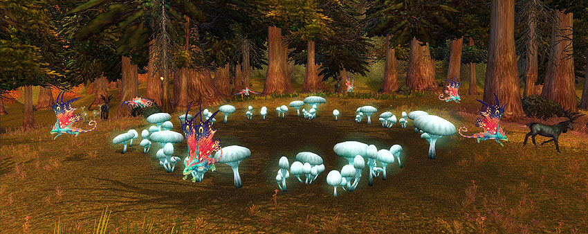 Fairy circle d Faerie Dragon Nest