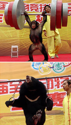 cruelty olympics, China, 29th September 2006