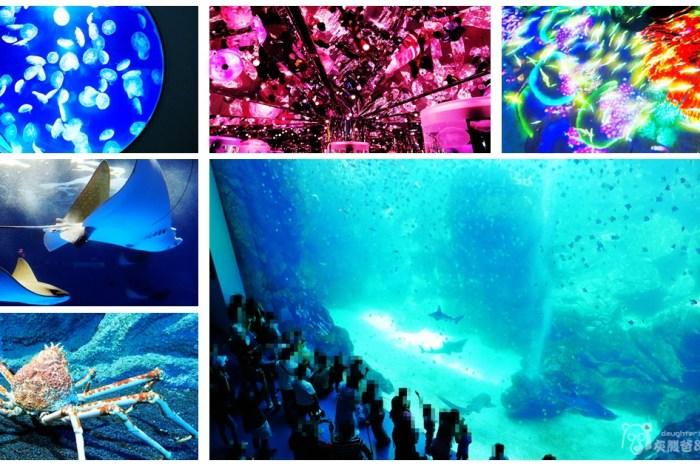 2020國內輕旅行│桃園青埔【Xpark 都會型水生公園】日本高人氣八景島團隊首度跨海來台水族館