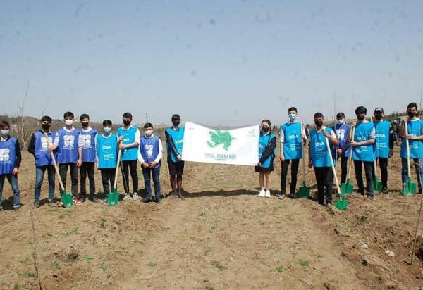 В Азербайджане успешно продолжается «Зеленый марафон» - ФОТО