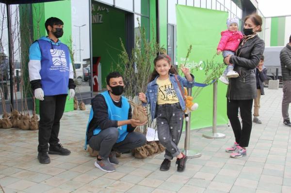 """В рамках """"Зеленого марафона"""" жителям Шамкира розданы ..."""