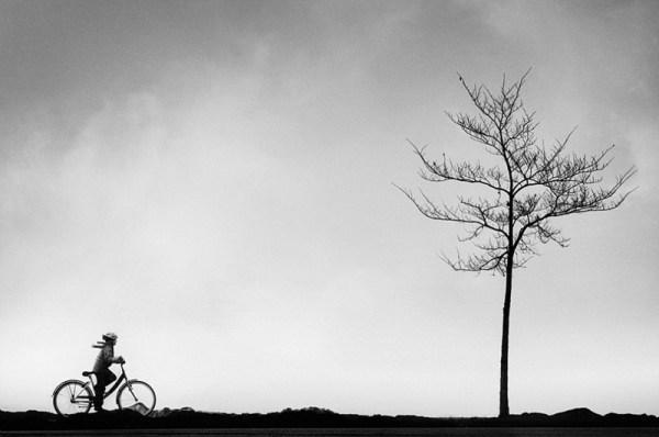 Контрастные и эмоциональные фотографии природы - ФОТОСЕССИЯ