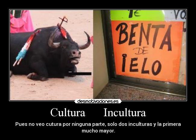 carteles cultura incultura desmotivaciones