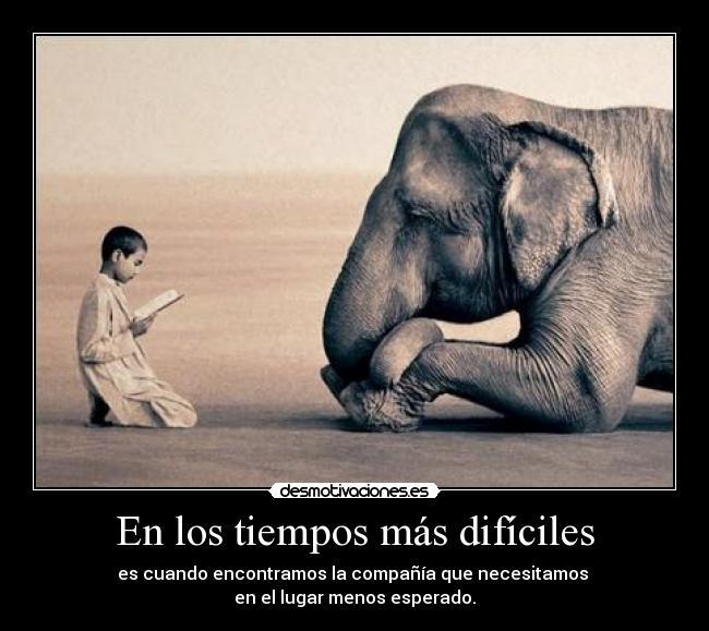 https://i1.wp.com/img.desmotivaciones.es/201206/tumblr_lbev4lJMAU1qbz3d5o1_500.jpg