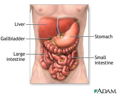 The Way To Treat Gallstone Quickly And Efficiently It Is Great To