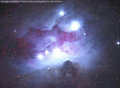 Orion nebula | Define Orion nebula at Dictionary.com