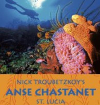Anse Chastanet Scuba St Lucia Dive Shop | Scuba Diving St ...
