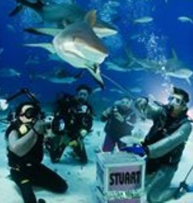 Stuart Cove's Dive Shop | Scuba Diving Bahamas