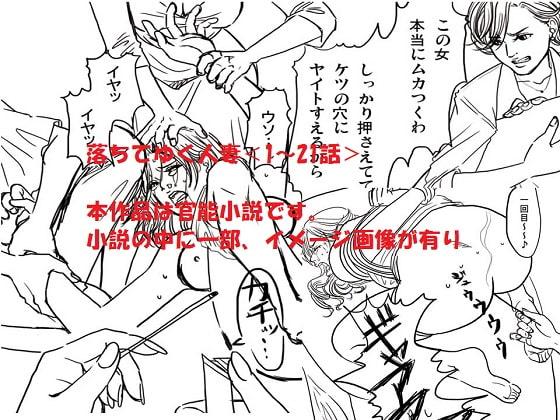 [女による女への陵辱] <官能小説・イメージ画像付き・全403P>落ちてゆく人妻