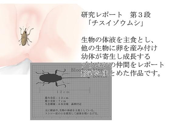 [てるてるがーる] 研究レポート チスイゾウムシ編