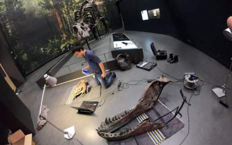 Forget digging for fossils. This museum 3D printed a full T-Rex skeleton instead