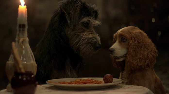 'The lady and the tramp' Disney+