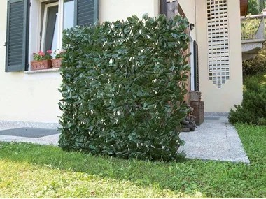 Main image of pannello per recinzioni paravento e frangivista in bambú,. Schermi Divisori Da Giardino Arredo Giardino Archiproducts