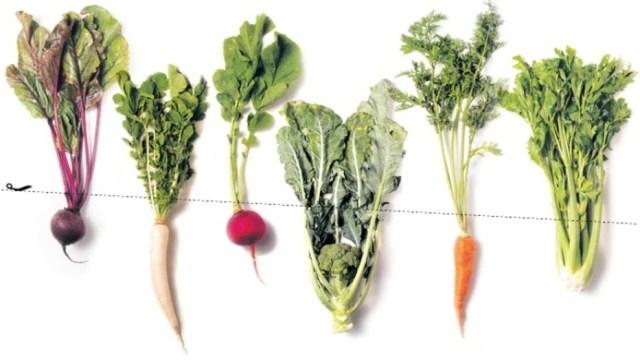 Resultado de imagem para brocolis refogado com cenoura