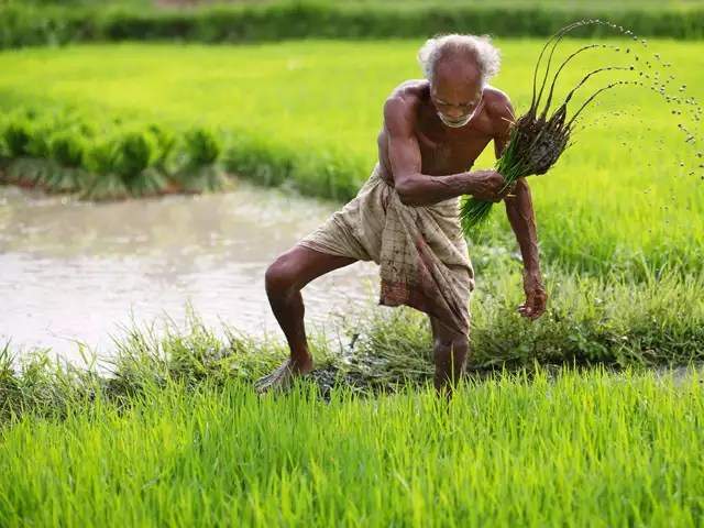 How are taxes on agricultural land calculated in India