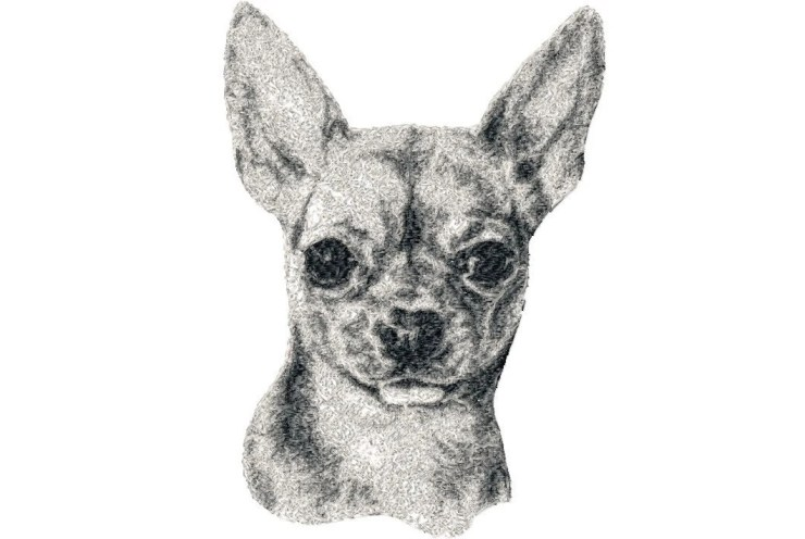 5x7 hoop photorealistic CHIHUAHUA close up Machine Embroidery Design File, digital download