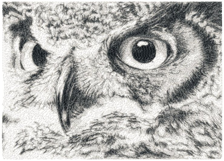 BIG hoop photorealistic OWL close up Machine Embroidery Design File, digital download