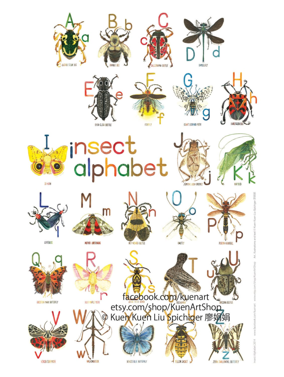 A Z Insect Alphabet Poster 8x10 Watercolor Art