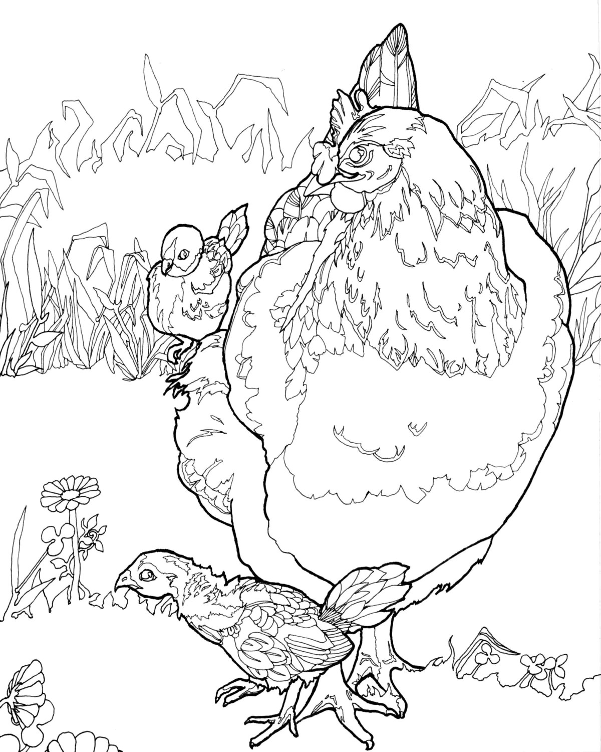 Digital Download Chicken Coloring Pages Adult Coloring Pages