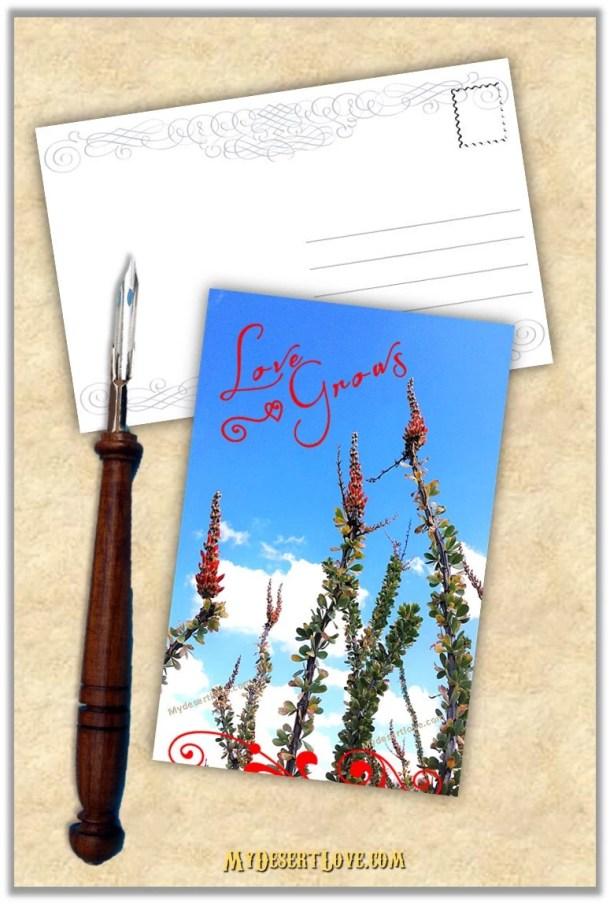 Love Grows Handmade Photo...