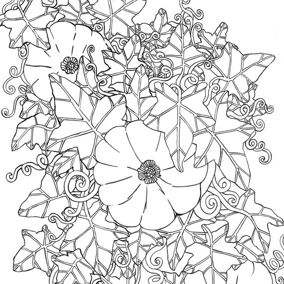 printable coloring page the pumpkin patch
