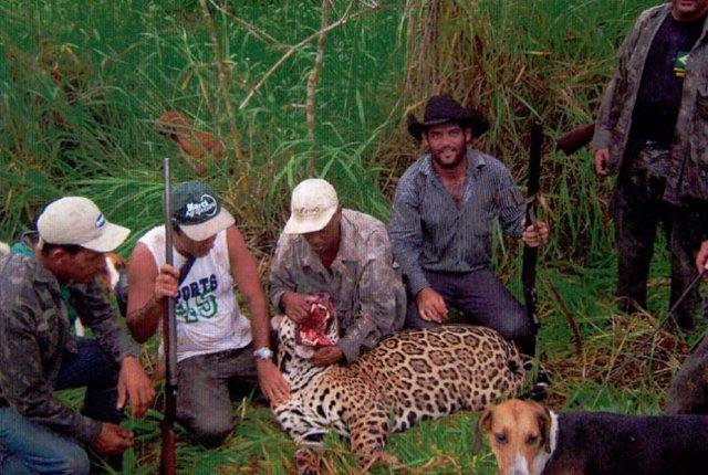 Grupo de cazadores brasileños acusados de caza furtiva