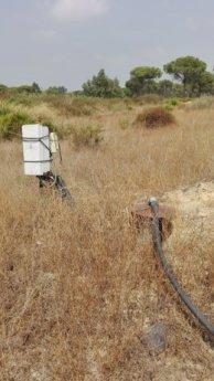 Pozo (sondeo) en el entorno de Doñana.